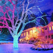 Snowtime 100 Straight Line Colour Changing Connectable LEDs