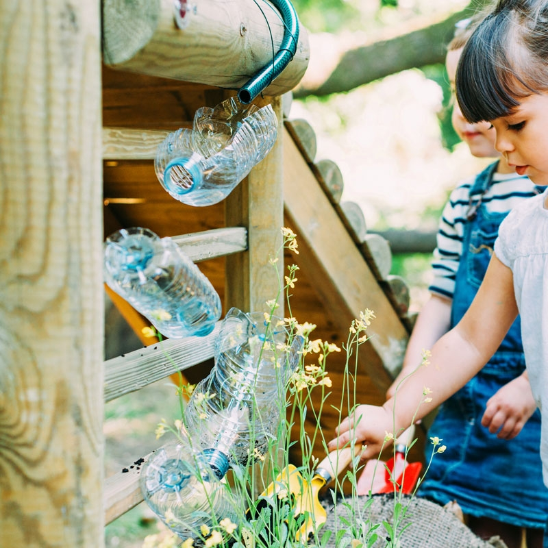 Plum Discovery Woodland Treehouse